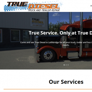 True Diesel Ltd