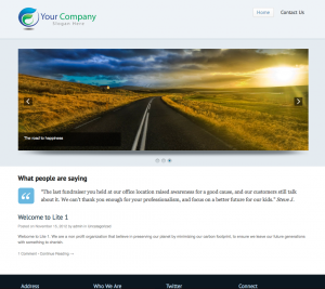 Lite 1 Website Example